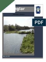 ACTIVIDADESDIDACTICAS_MANGLAR.docx