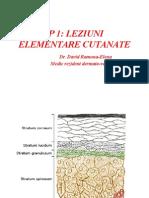 LP1 LEZIUNI ELEMENTARE CUTANATE.pptx