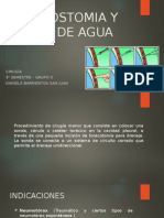 Pleurostomia Cerrada y Sello de Agua. Daniela Barrientos 3-3
