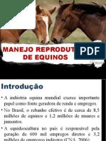 Manejo Reprodutivo de Equinos