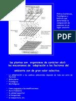 bioadaptaciones.ppt