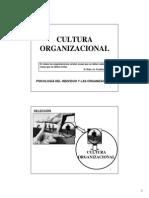 CulturaOrganizacional(1)