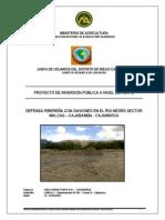 defensa-riberena-gaviones-rio-negro.pdf
