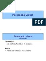 06 Percepcao Visual