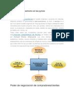 Análisis Del Microentorno en Las Pymes