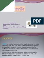 CIUPERCI (3).ppt