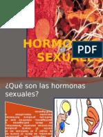 HORMONAS SEXUALES.pptx
