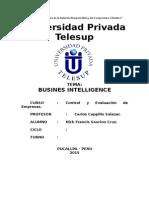 Business Intelligence TG
