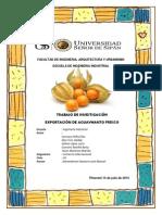 Informe Original - Exportacion de Aguaymando Fresco Comercio Internacional