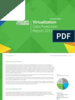 Virtualization Data Protection Report2013