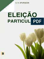 livro-ebook-eleicao-particular.pdf