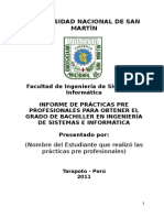 Modelo de Informe de Prácticas Pre Profesionales