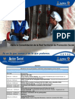 Conclusiones Taller Trabajo Consolidacion Red 28 de Enero de 2010