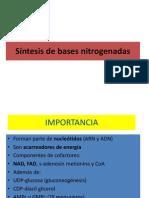 10 Sintesis de Bases Nitrogenadas