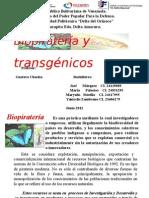 Biopiratería y Transgénicos (1)