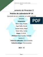 lab pcm 2- CARBON ACTIVADO.pdf