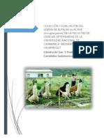 Colección y Evaluación Del Semen de Alpacas Huacaya