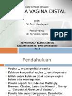 Aplasia Vagina Distal