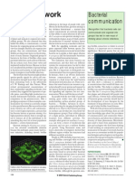 Artigo comunicação bacteriana
