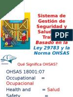 Sistema de Gestión de Seguridad y Salud en el Trabajo Basado en la Ley 29783 y la Norma OHSAS 18001:07