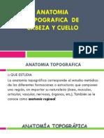 ANATOMIA TOPOGRAFICA .pdf