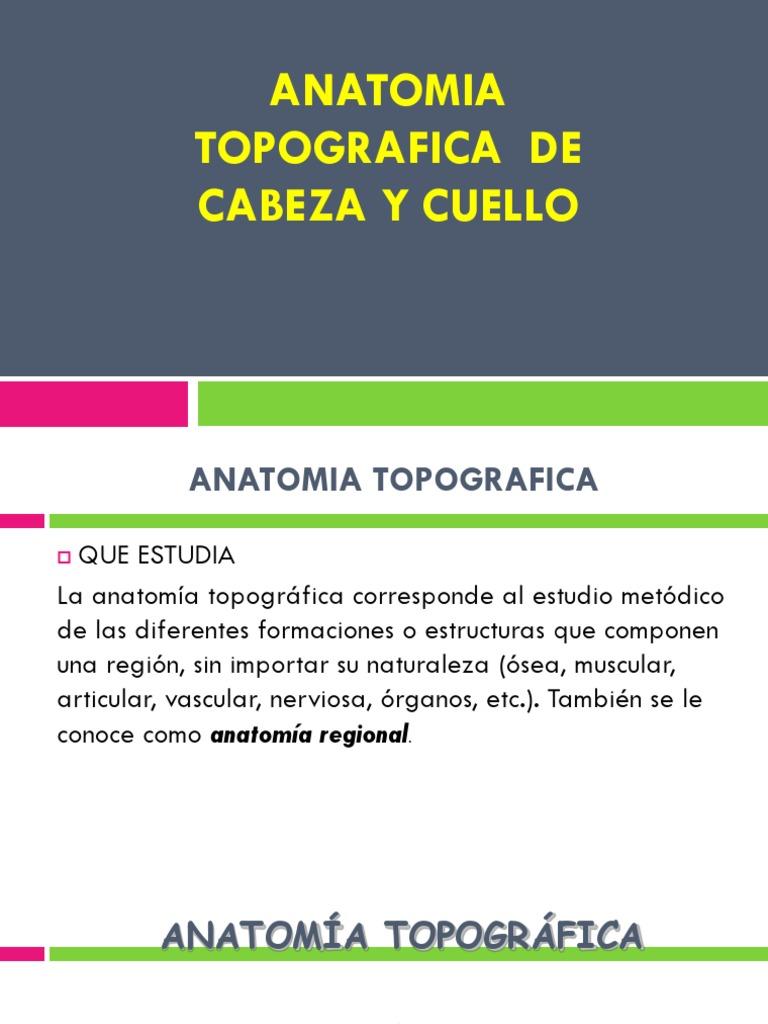 Bonito Cuello De La Anatomía Muscular Ct Festooning - Imágenes de ...