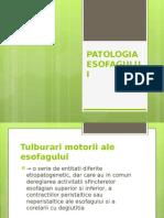 Curs 4- Patol Esofag