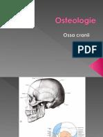 osteologie craniu