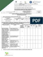 Anexa 1 Raport Individual Dez Prof Tipizat