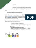 Programa de Practicas Chile