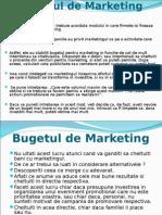 9.Bugetul de Marketing