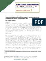 Crisis de Los Alimentos y Bioenergía, La Representación de Intereses Del Sector Privado en La FAO