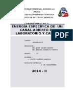 Lab Nº 2- Energia.especifica