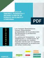 Produccion Biotecnologica de Sabores Pigmentos y Aromas