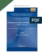 Portafolios de Evidencias, F Baíza 6jul2015 A