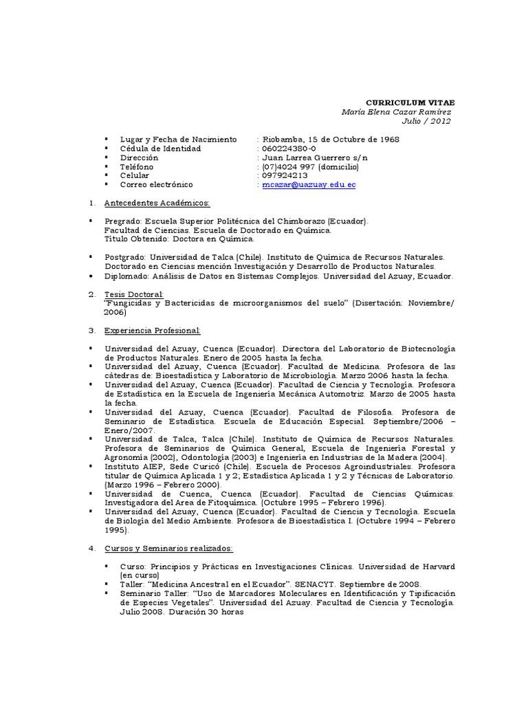 Excelente Currículum Vitae Para Prácticas De Pregrado Modelo ...