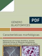 Género blastomyces