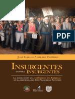 Juan Carlos Andrade - Insurgentes_contra_Insurgentes