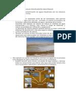Contaminacion de Aguas Por Efluentes Industriales