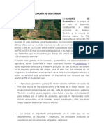 Sectores de La Economía de Guatemala