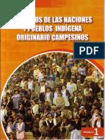 PUEBLOS INDIGENAS DE BOLIVIA
