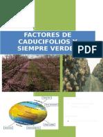 Factores de Caducifolios y Siempre Verdes