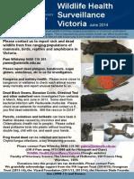 Wildlife Newsletter 12