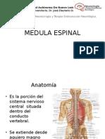 MEDULA ESPINAL SESION.pptx