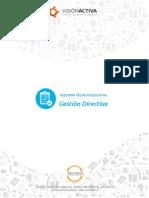 ATE - Visión Activa - Servicios Gestión Directiva