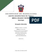 Monografia Hidrocefalia