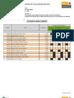 Psp Matriz Evaluacion Grupal Asesorias 1265650400033