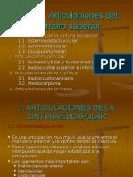 Tema6 Articulacionesdelmiembrosuperior 110505103128 Phpapp02