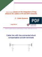 Long transmission cable.pdf