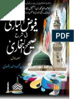 Fuyuz_ul_Bari_Fi_Sharah_Bukhari_Vol1.pdf